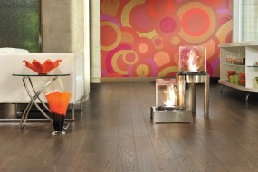 Mirage Alive Red Oak Urbana
